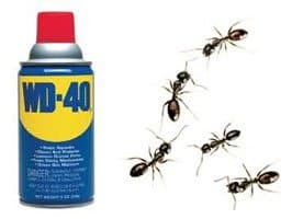 WD40-and-ants One good thing by you - volume two!