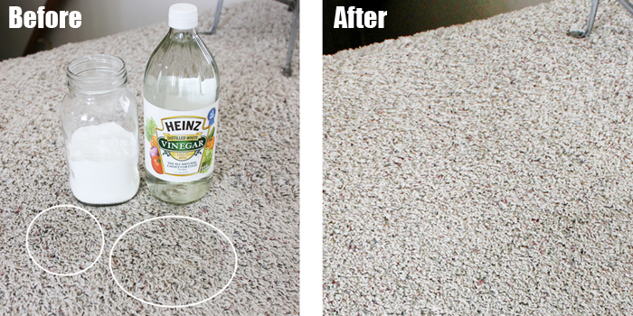 A Simple Effective Remedy For Pet Stains On Carpets One